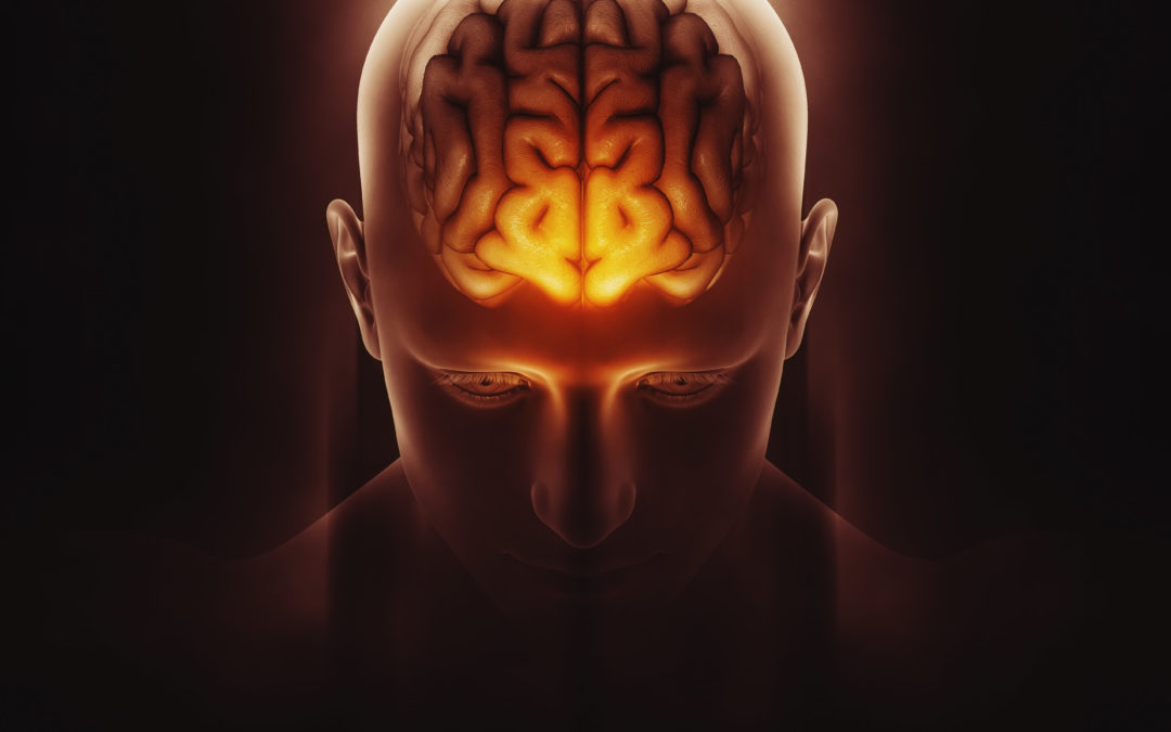 Best Alcohol Rehab – Alcohol and the Brain